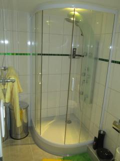 modern shower cabine with shower panel