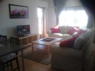 Newly furnished apartment