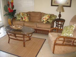 Beautiful Bayfront Condo, Bring Your Boat & Skis, Isla del Padre Sur