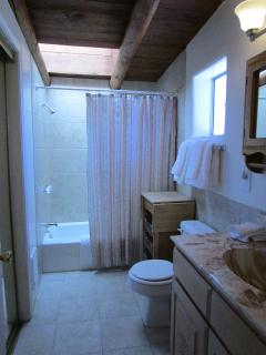 Spacious bathroom with tub/shower combination, walk-in closet and skylight.
