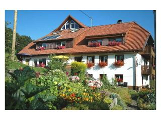 Vacation Apartment in Dachsberg - 915 sqft, 2 bedrooms, max. 5 people (# 7707)