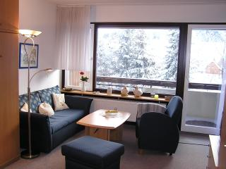Vacation Apartment in Schönwald - 409 sqft, max. 2 persons (# 7833), Triberg