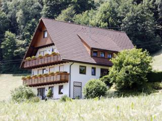Vacation Apartment in Bad Peterstal-Griesbach -  (# 8068)