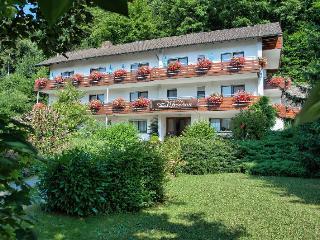 Guest Room in Oberharmersbach -  (# 8325)