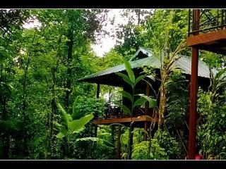 Monsoon Retreats Homestay, Thekkady