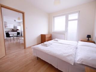 1 BDR apartment Zahradnicka 36, Bratislava