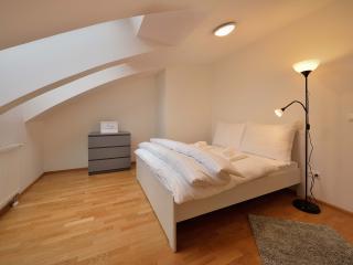 Deluxe 3 BDR apartment 29 Augusta Street 36C, Bratislava