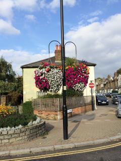 And the hanging baskets in the summer months