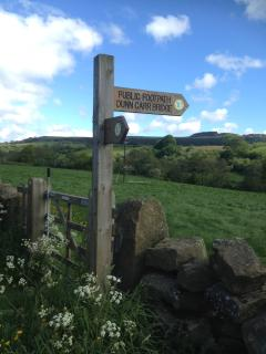 You will be spoilt for choice by the vast number of picturesque walks around Rosedale