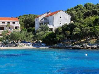 Lovely Apartment By The Clear Korcula Sea | S1