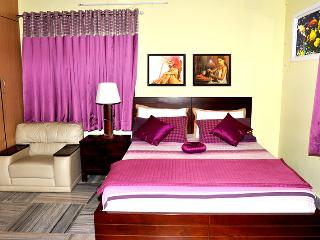 POSH ,FULLY FURNISHED3 BHK APARTMENT,T.NAGAR, Chennai (Madras)
