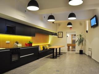 Bomb Shelter apartment  in the center of Vilnius (free parking, spa)