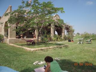 Guest house du lac Qarun: Chez Emma, Ibshaway