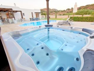 Aurai villa close to Ladiko with pool & Jaguzzi