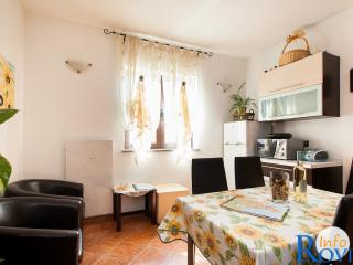 Brown 4 + 1 apartment, Rovinj