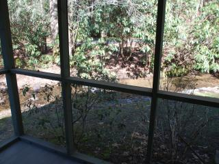 A large screened in porch, perfect place to relax and listen to the creek.