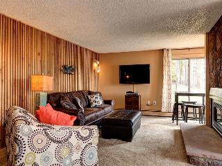 Ski Watch 2BD True Ski-in/Ski-out Condo Peak 8, Breckenridge