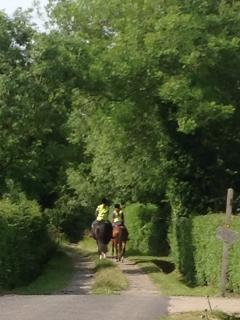 Horse riders enjoy the Drove alongside Sleepy Hollow