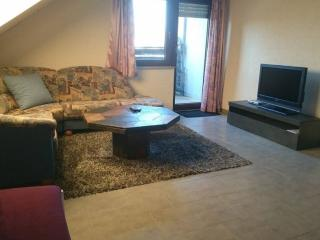 Vacation Apartment in Zirndorf - 797 sqft, quiet, comfortable, central (# 8615)
