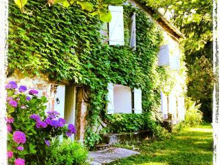 superbe maison de campagne Haut Languedoc