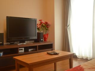 Beautiful Family Apartment in Central Kyoto