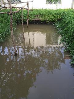 small lake :)