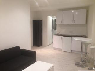 STUDIO MEUBLE NICE CENTRE-GAMBETTA/THIERS