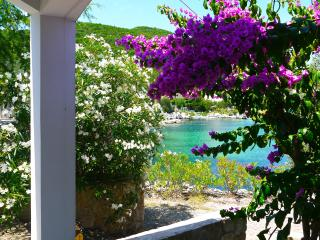 Croatia - Beach villas, Rentals by the sea, Putnikovic