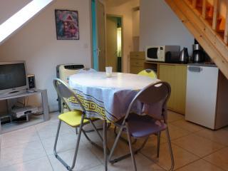 Salon avec TV + Chaine HiFi + Canapé convertible + Climatiseur
