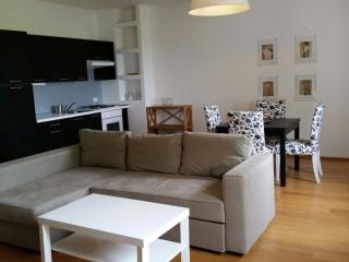 Apartament around Venice