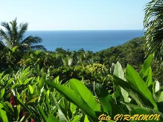 Gite GIRAUMON seaview  in tropical garden