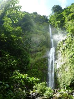 We can advice you about walks in the mountain, with many great waterfalls and rain forest