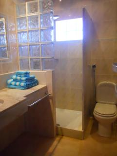 Annex Bathroom with Rain Forest Shower.