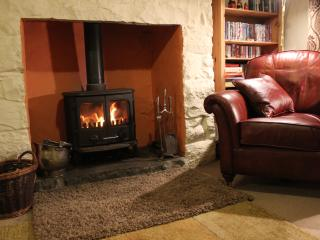 Cosy evenings in front of a roaring fire