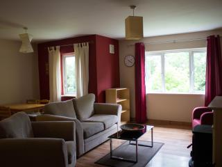Cosy Two Bedroom apartment, Ennis