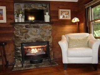 Gas Log stove  for warmth and a little romance