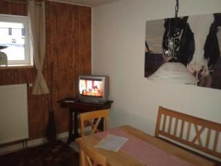 Kuhstall mit Fernseher