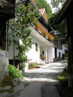 Dovje the village opposite Mojstrana