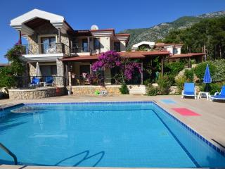 Holiday Villa With Private Pool and Garden, Ölüdeniz