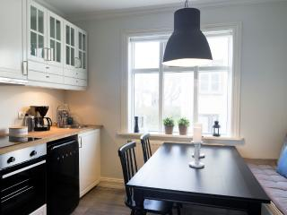 Holiday home, 2 apartments, perfect location!, Reykjavik