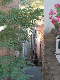Ruelle du vieux village, derrière la maison
