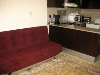 Cozy studio near the Gulf #ARS17, Dubaï