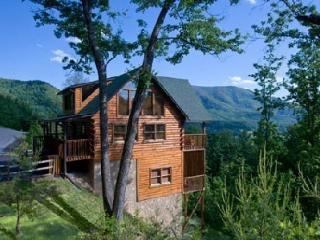 Luxurious Cabin Breathtaking View of Mountains and Wears Valley 3bed/3bath