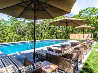 WALSB - New Contemporary Luxury Home,  Heated Pool 18 x 40, Luxury Amenities, Sc