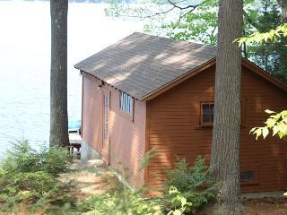 Pet-Friendly Waterfront Home on Lake Waukewan (REU96W), New Hampton
