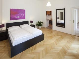 Vaclav suite 11/41 - 010093, Praga