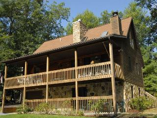 Charming 3 Bedroom Cabin with hot tub, privacy, & outdoor fire pit!