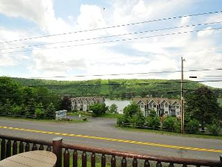 Lovely luxury villa w/ lake & ski slope views!, McHenry