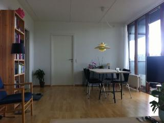 Copenhagen apartment with large balcony near nice park