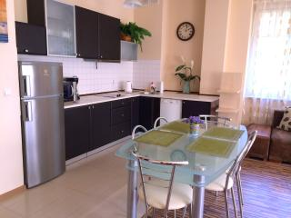 Apartament 100 m from Neptune Fountain, Danzig